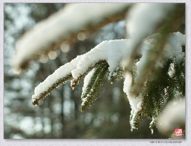 【心想事成】風雪随拍之二_图1-11