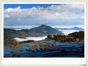 【蓝与红】---元阳梯田之爱春