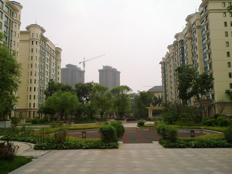 北大荒变江南--沈阳五周年纪念_图1-11