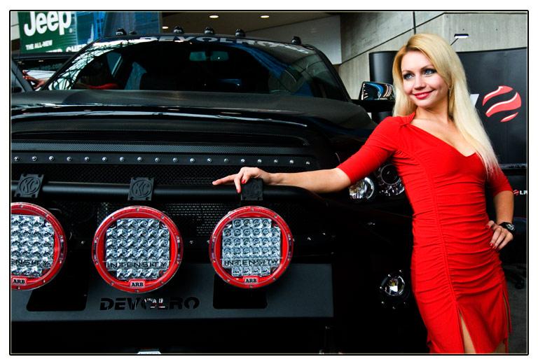 new york auto show—2013_图1-1