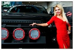 new york auto show—2013