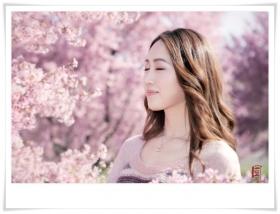 【风】樱花树下