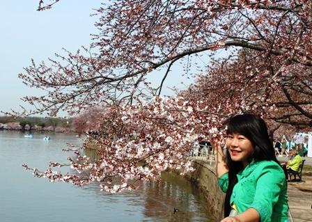 遇见樱花季_图1-3