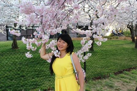 遇见樱花季_图1-31
