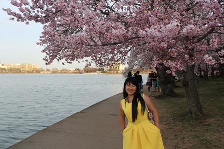遇见樱花季_图1-37