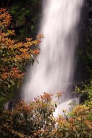 井冈山瀑布