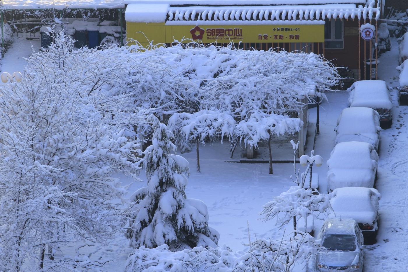 春天的雪_图1-2