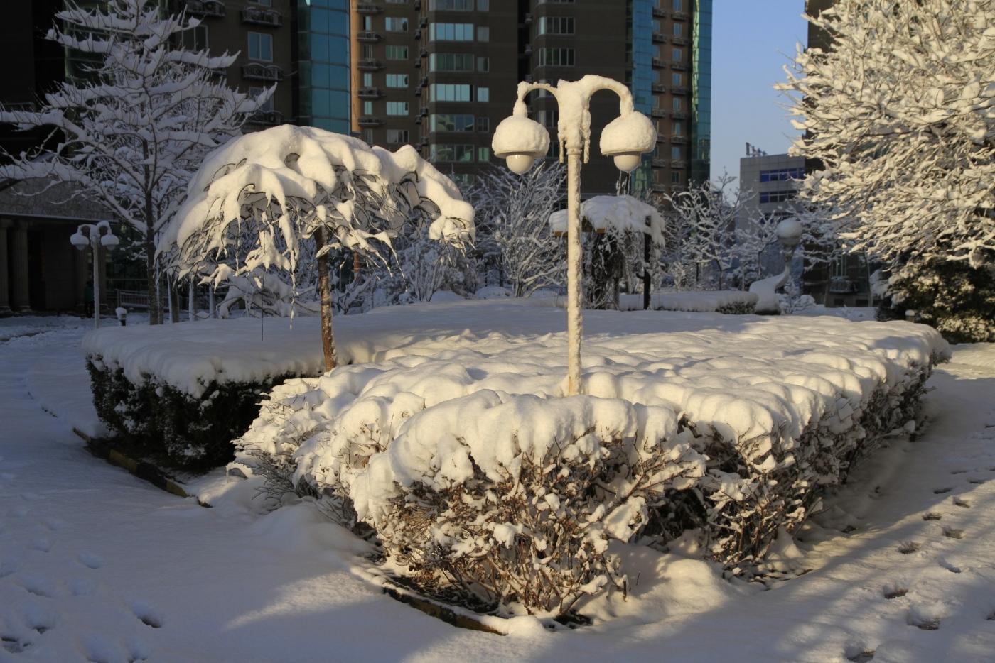 春天的雪_图1-9