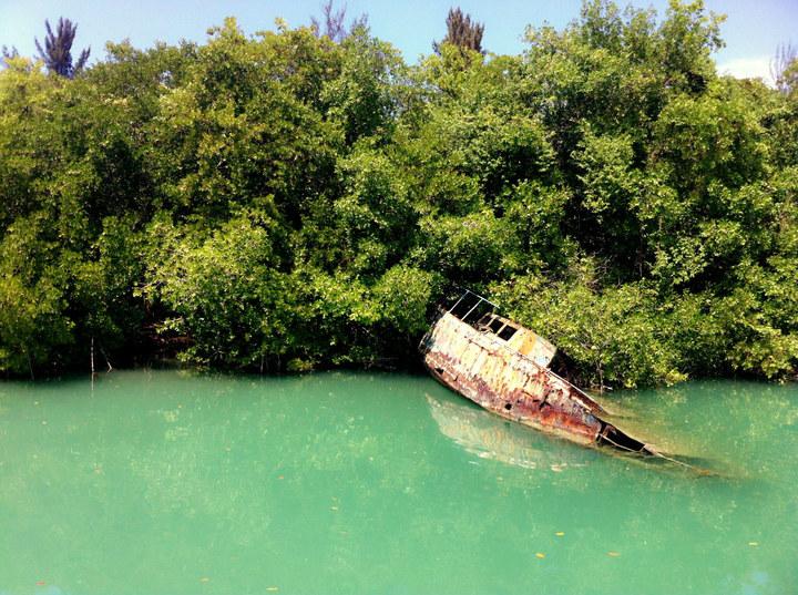 【原创】女儿的留学生活-----春假乘邮轮远航加勒比_图1-57