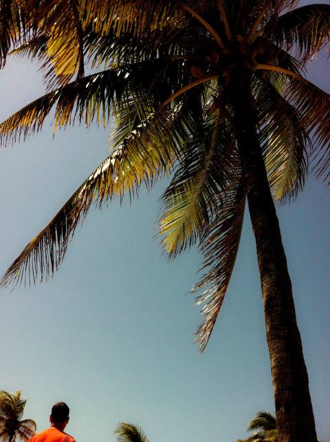 【原创】女儿的留学生活-----春假乘邮轮远航加勒比_图1-37