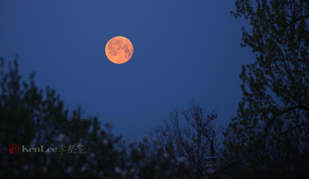 [Ken Lee] 《红月亮》_图1-1