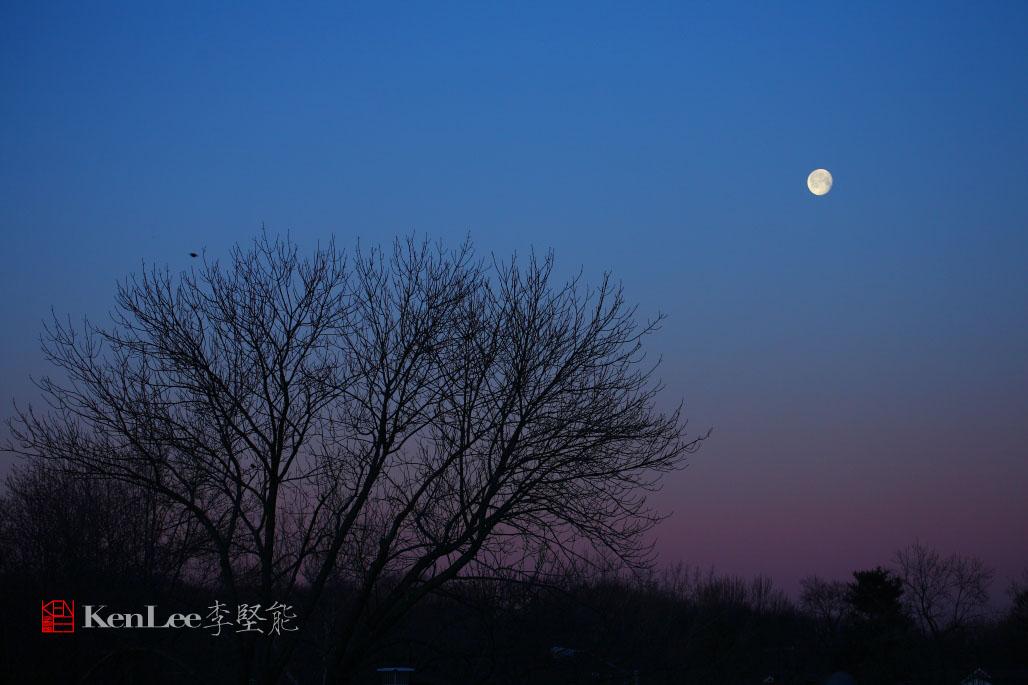 [Ken Lee] 《红月亮》_图1-4