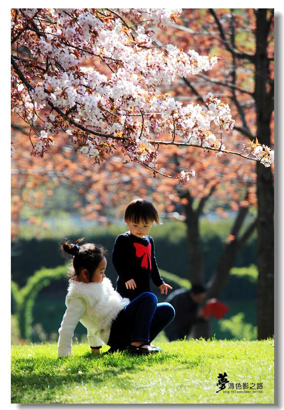 〖梦游摄影〗祝母親节快樂!_图1-22