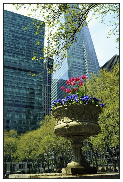 春回纽约_图1-2