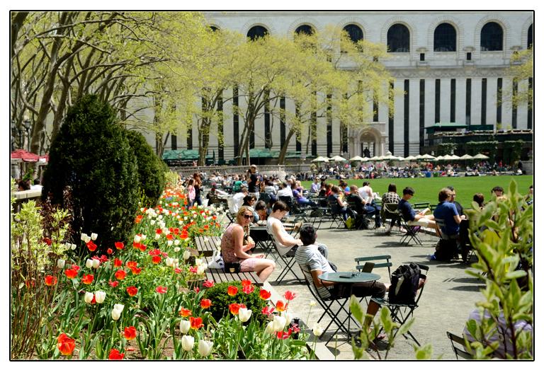 春回纽约_图1-3
