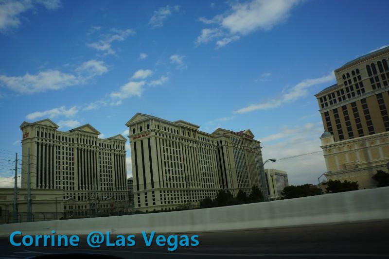 【C游记】纸醉金迷Vegas我来了!_图1-15