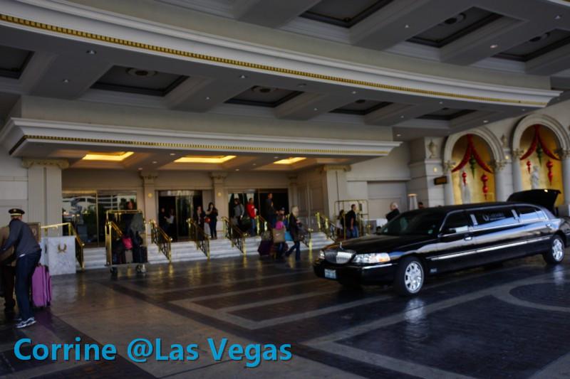 【C游记】纸醉金迷Vegas我来了!_图1-17