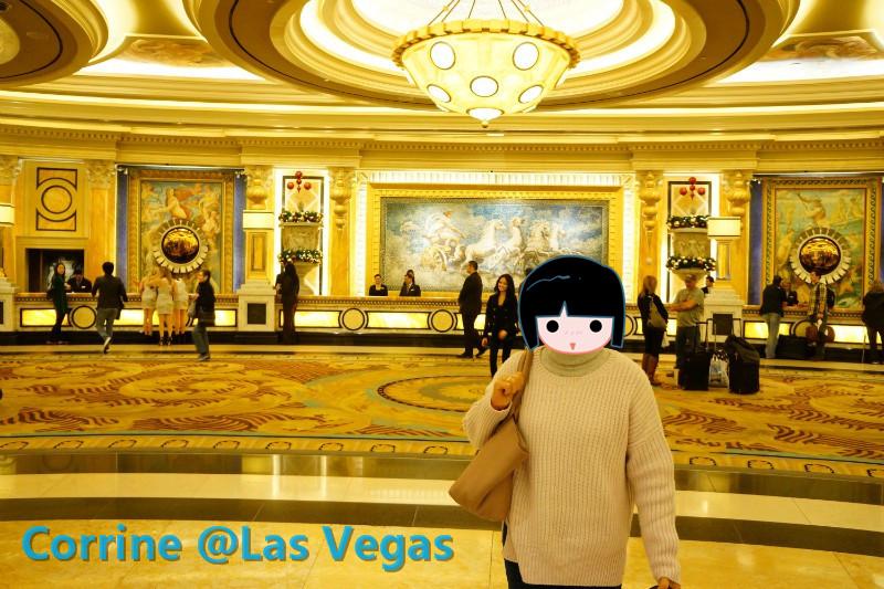 【C游记】纸醉金迷Vegas我来了!_图1-18