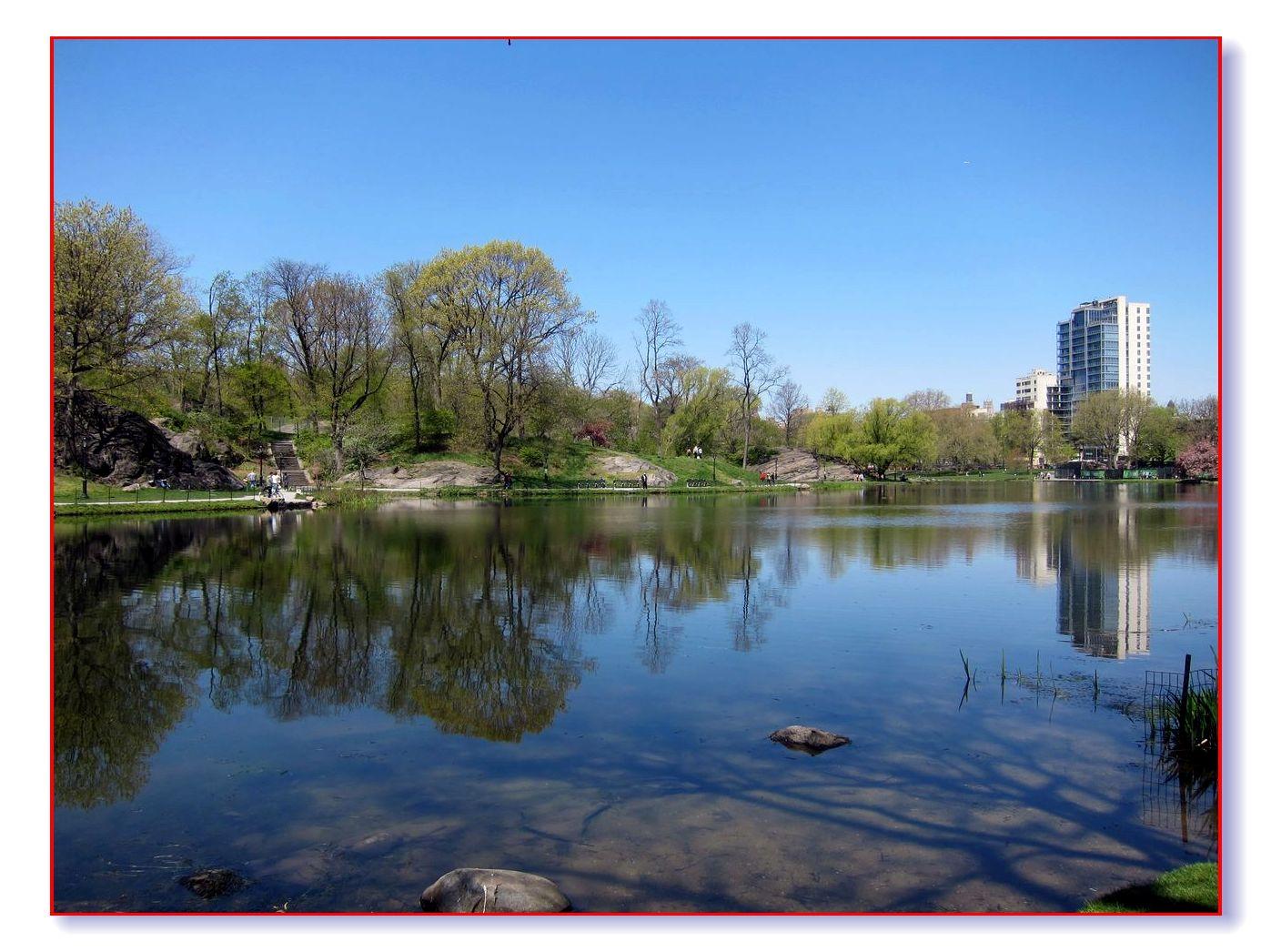 春满中央公园_图1-3