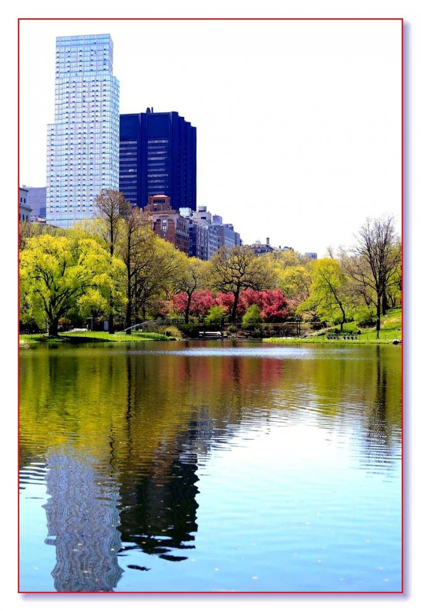 春满中央公园_图1-5