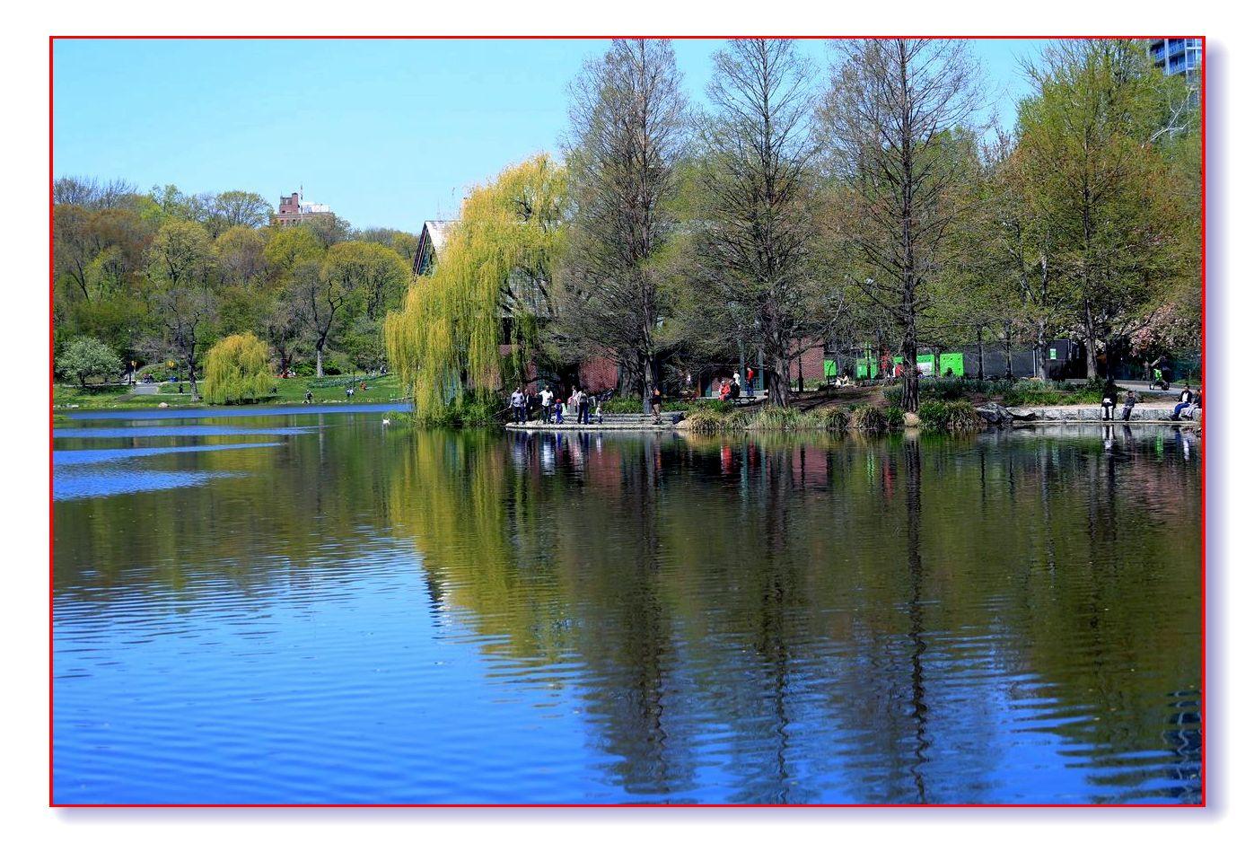 春满中央公园_图1-6