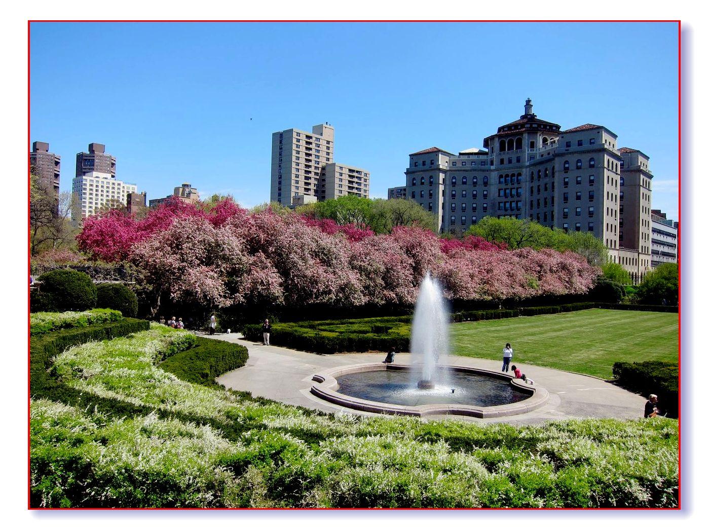 春满中央公园_图1-16