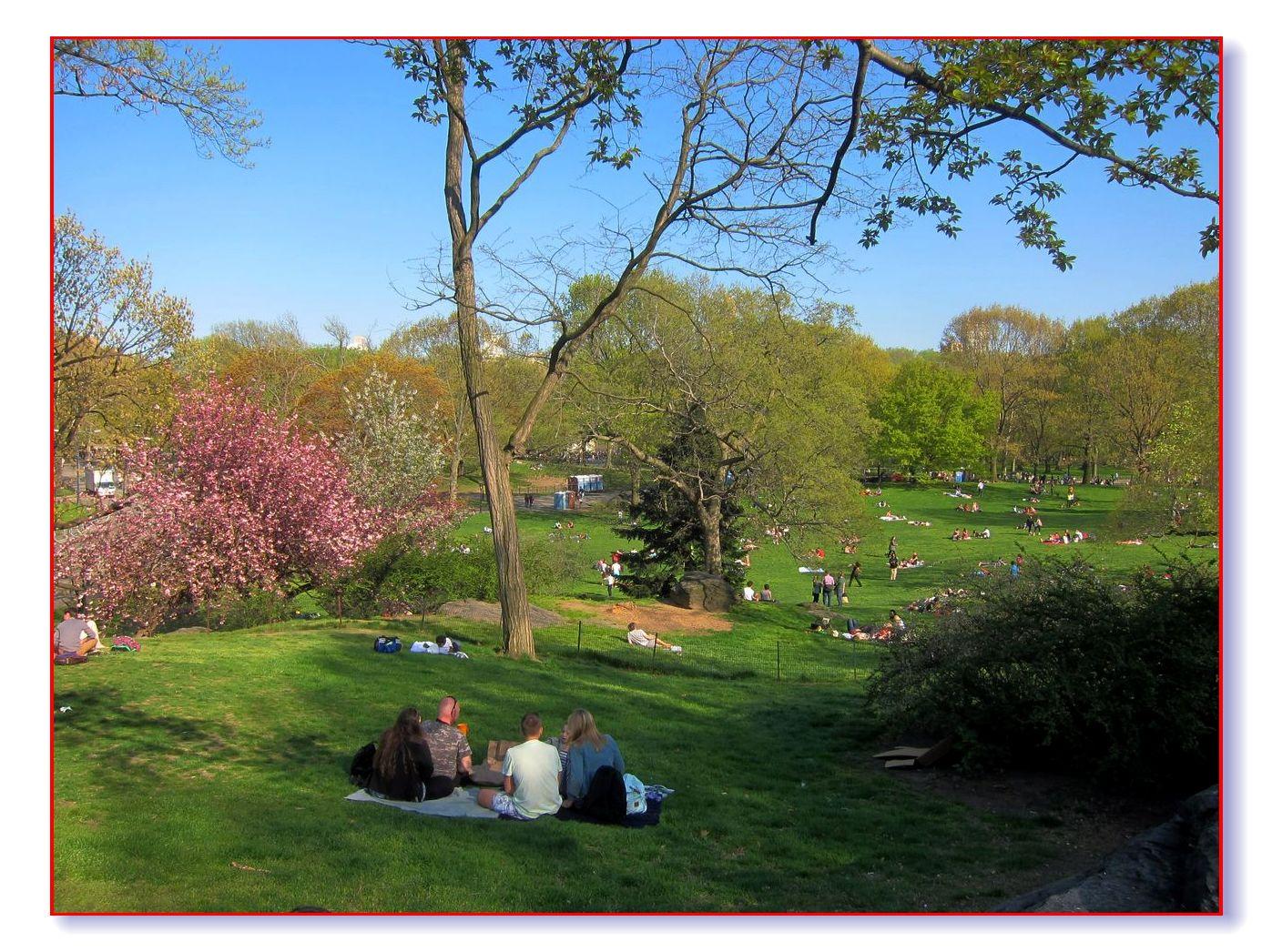春满中央公园_图1-31