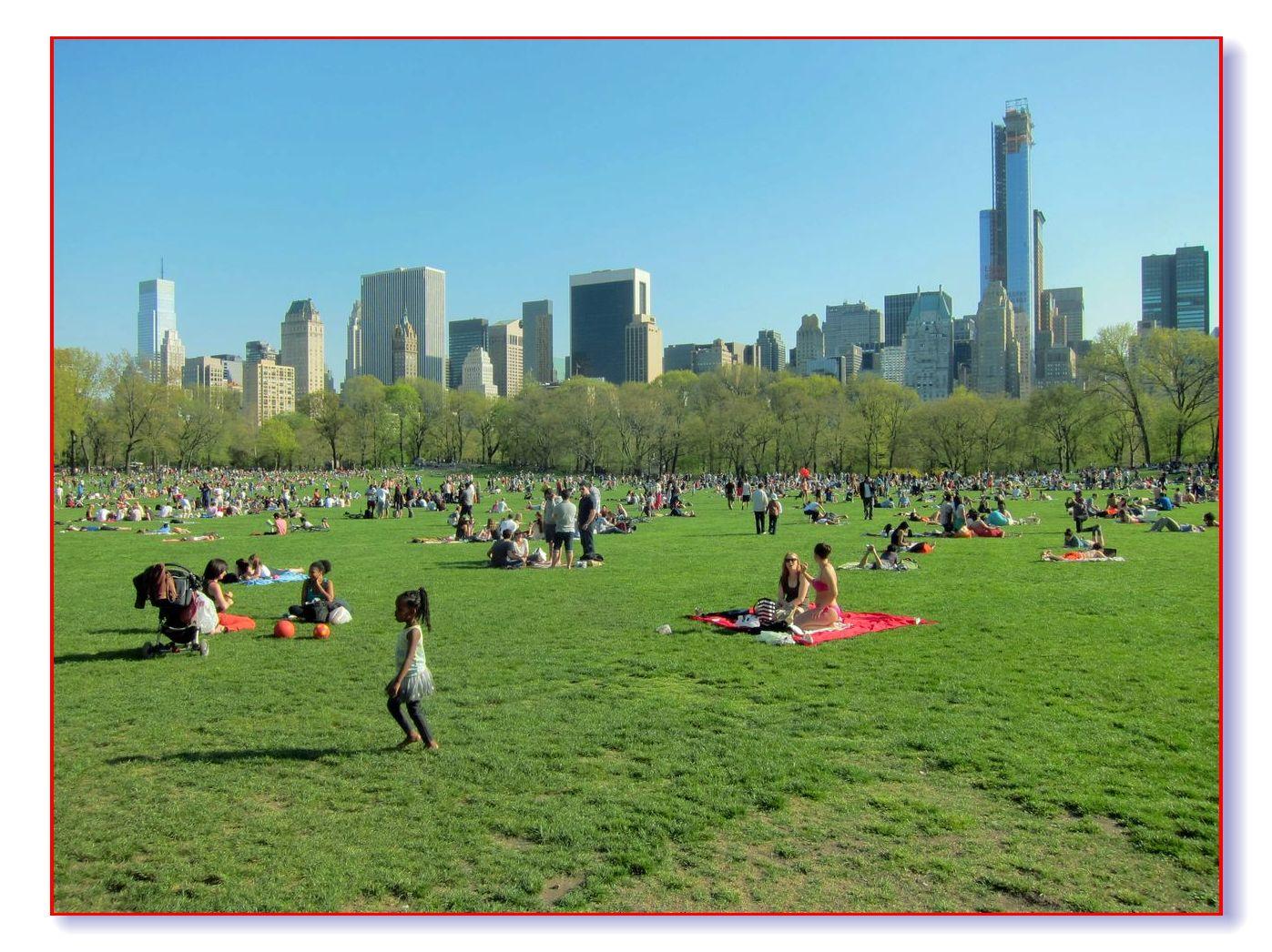 春满中央公园_图1-25