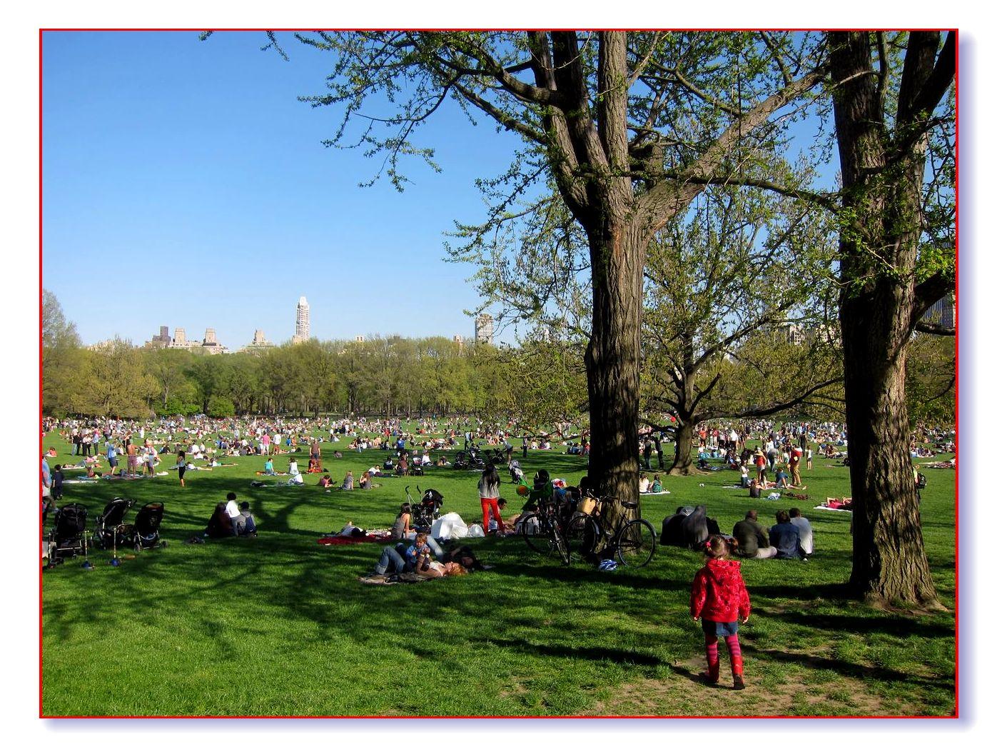 春满中央公园_图1-27