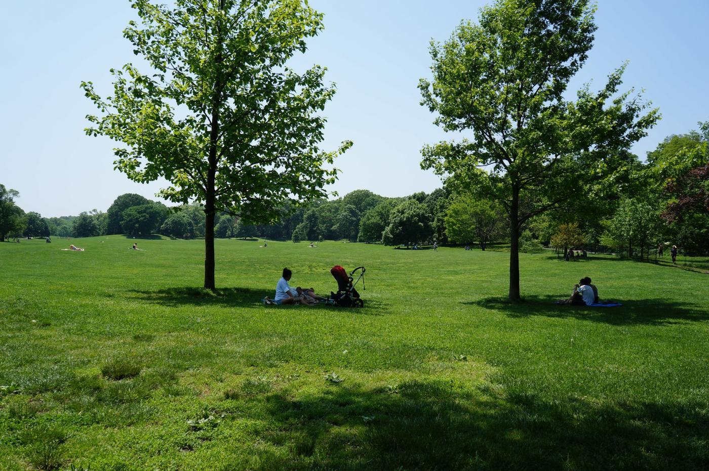[jiejoy]Prospect Park-Grand Army Plaza(展望公园-大军广场)_图1-5