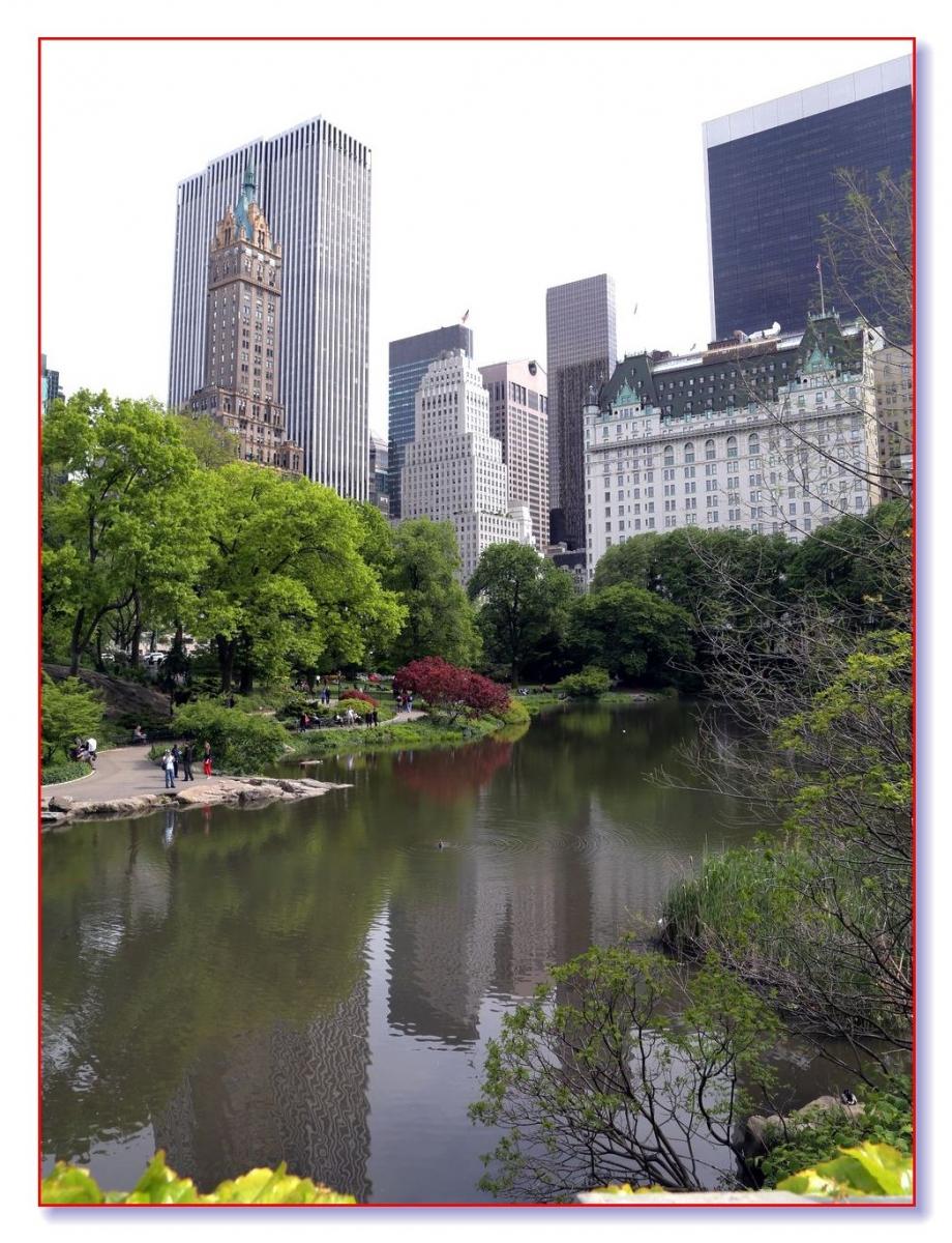 中央公园绿茵行_图1-18