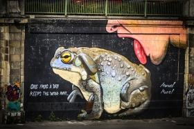 【自由鸟】游船系列(十四)有趣的街头涂鸦