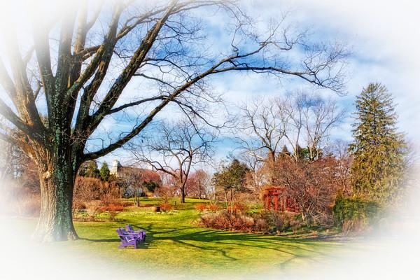 【自由鸟】绚丽的色彩,温暖的春风,梦一般美丽的景色 - 畅之 - 智凯书屋