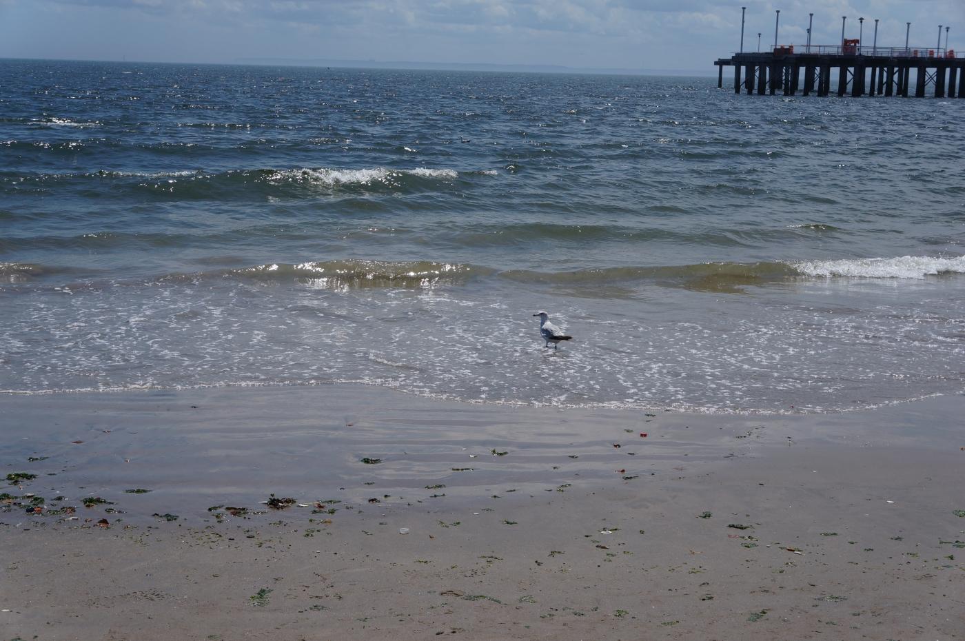 [jiejoy]国庆日休闲---海、沙滩、人_图1-14