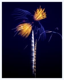 史泰登岛海滩节烟花
