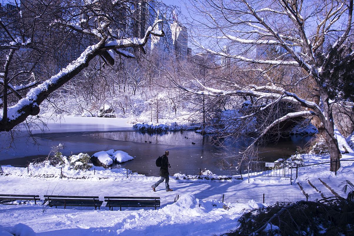 (原创摄影)冰冻覆盖的中央公园_图1-6