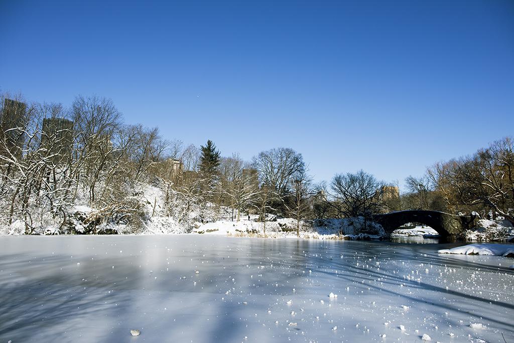 (原创摄影)冰冻覆盖的中央公园_图1-3