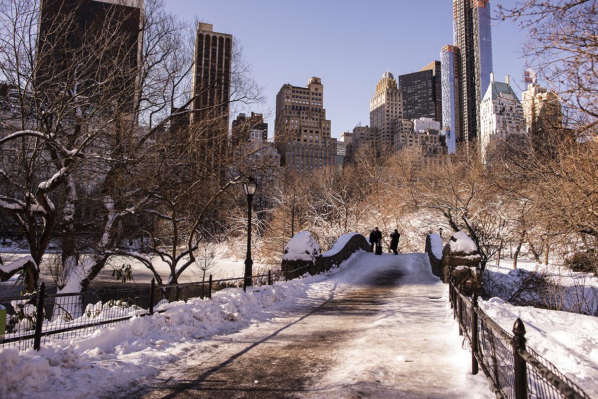 (原创摄影)冰冻覆盖的中央公园_图1-4