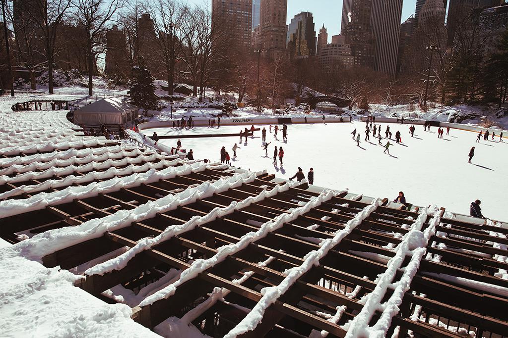 (原创摄影)冰冻覆盖的中央公园_图1-5