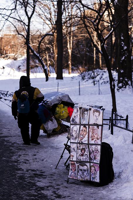 (原创摄影)冰冻覆盖的中央公园_图1-11