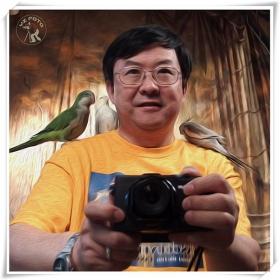 【相机人生】我与鸟的搞笑自拍像