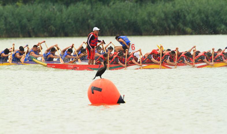 【原创】龙舟节是中国传统文化的骄傲!!_图1-8