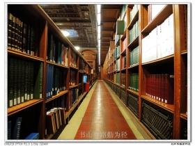 【盲流摄影】纽约图书馆的里里外外