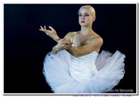 芭蕾舞者的优美舞姿 ballerina