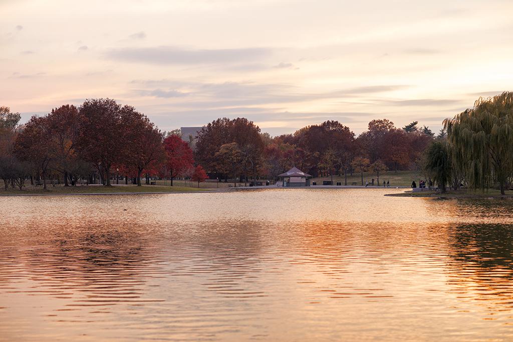 (原创摄影)华盛顿DC有美景,没感觉_图1-1