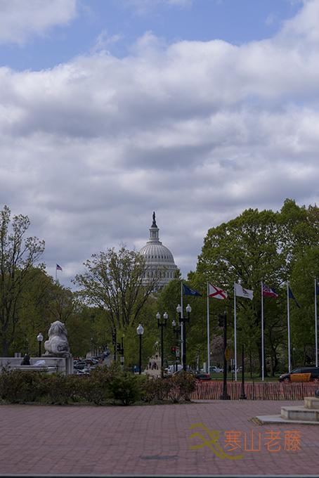 (原创摄影)华盛顿DC有美景,没感觉_图1-13