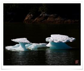 【风】索耶冰川 - 阿拉斯加行(四)