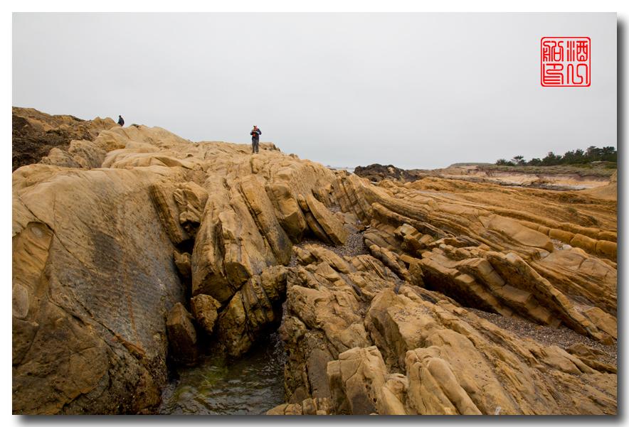 《酒一船》:加州海岸赏奇石_图1-10