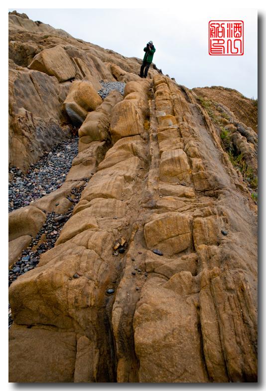 《酒一船》:加州海岸赏奇石_图1-11
