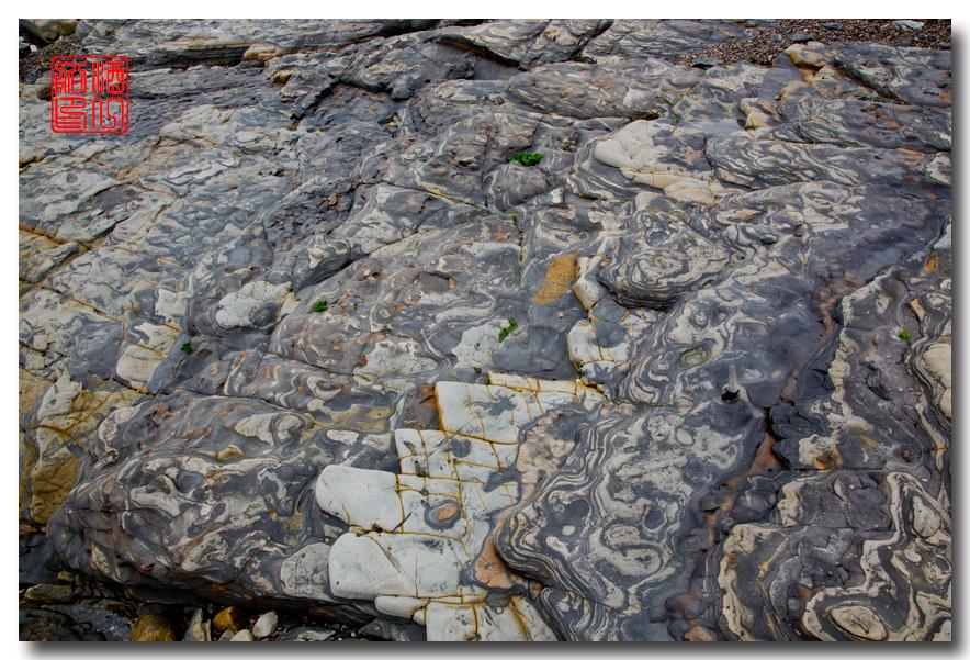《酒一船》:加州海岸赏奇石_图1-12